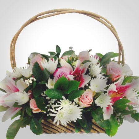Basket 013