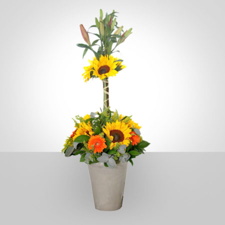 Contract Flowers 002