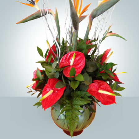 Contract Flowers 018